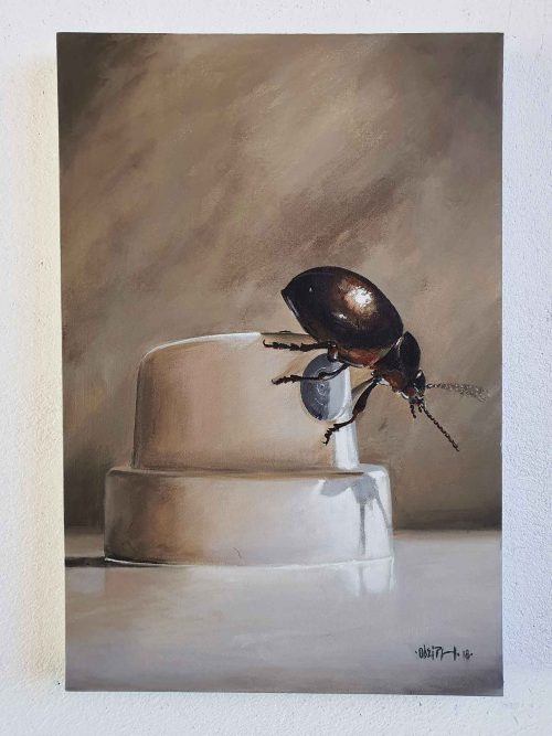 beetle on the cap