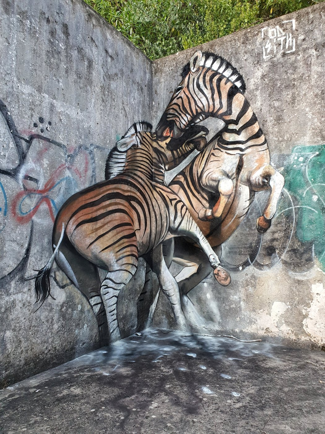 Anamorphic zebras painted on a corner