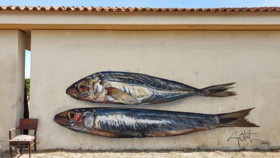 Lisbon and Sardines - Odeith 2021
