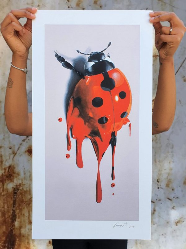 lady-bug-2nd-release-