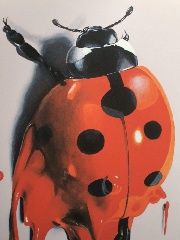lady-bug-2nd-release detail